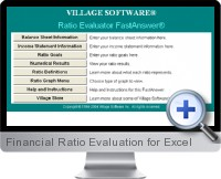 Financial Ratio Evaluation screenshot