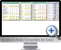 Financial Ratio Templates screenshot
