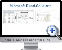 Financial Management Modeling screenshot