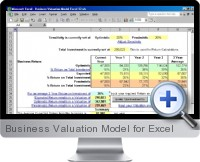 Business Valuation Model screenshot